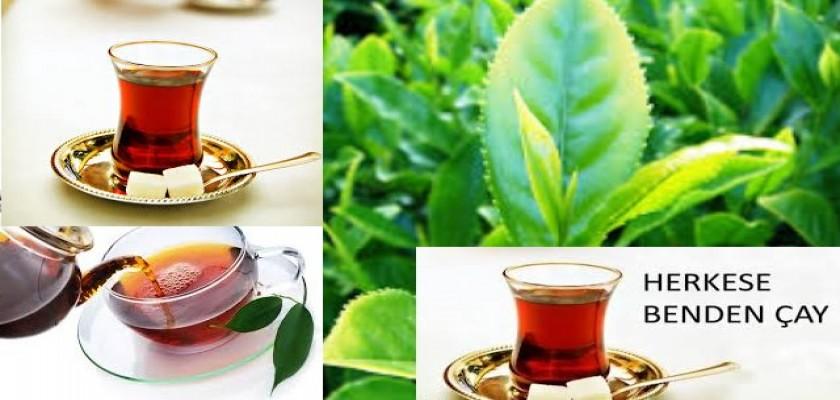 Sabahları Bir Bardak Çay İle Başlangıç