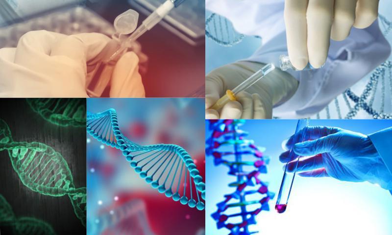 Genetik Testleri Nedir, Nelerdir?