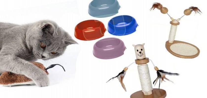 Her Kedi Maması Güvenli Midir