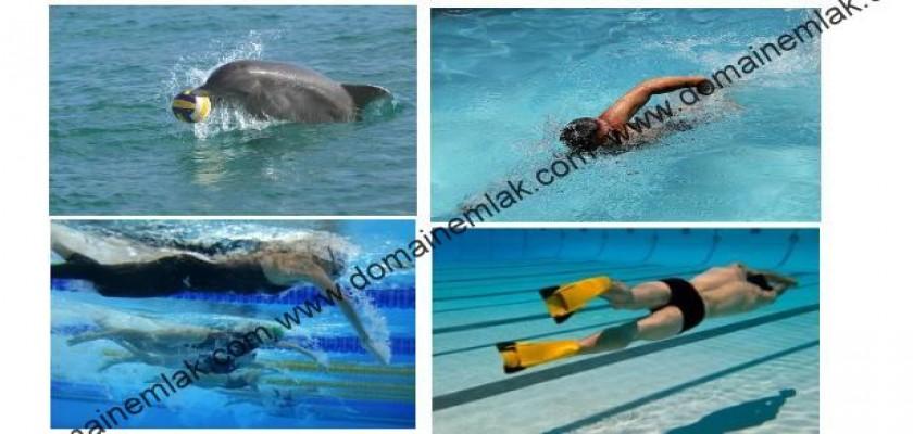 Yüzmeyi Kendi Kendine Öğrenmek
